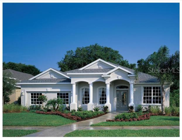 Lot 10 Frazee Hill Road, Dade City, FL 33523 (MLS #T3161031) :: The Duncan Duo Team