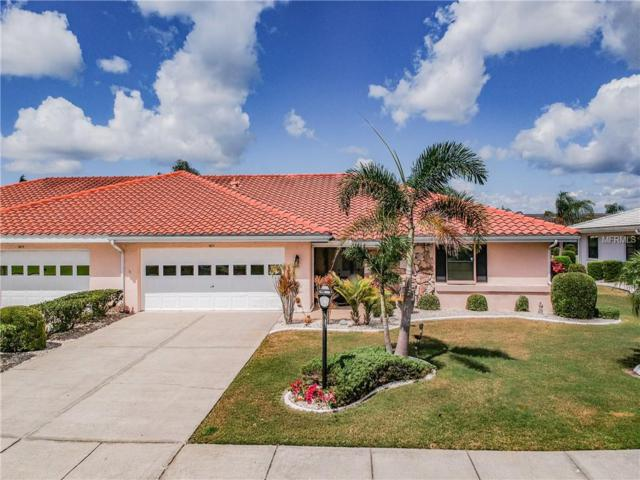 1611 Weatherford Drive, Sun City Center, FL 33573 (MLS #T3161163) :: Cartwright Realty