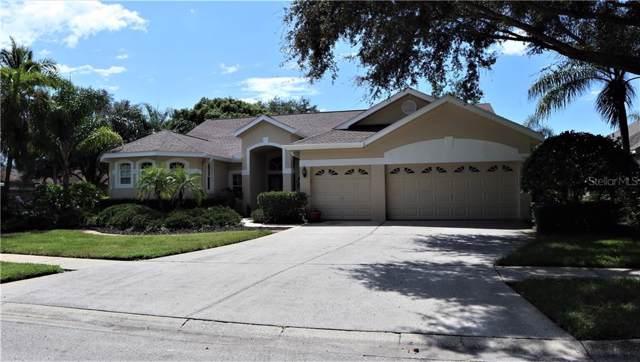 4740 Highgate Boulevard, Palm Harbor, FL 34685 (MLS #T3161948) :: Delgado Home Team at Keller Williams