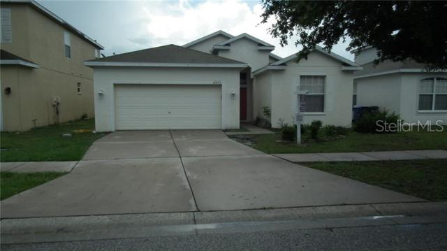 11223 Madison Park Drive, Tampa, FL 33625 (MLS #T3162318) :: The Duncan Duo Team