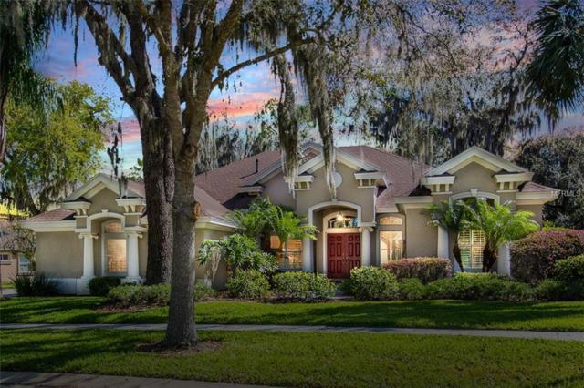 16213 Ternglade Drive, Lithia, FL 33547 (MLS #T3162398) :: The Duncan Duo Team