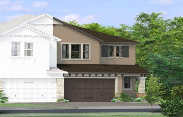 4933 San Martino Drive, Wesley Chapel, FL 33543 (MLS #T3162456) :: The Duncan Duo Team
