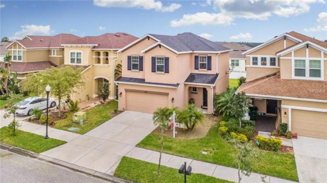 32880 Windelstraw Drive, Wesley Chapel, FL 33545 (MLS #T3162721) :: Cartwright Realty