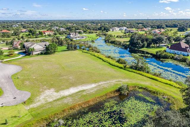 2503 Tylers River Run, Lutz, FL 33559 (MLS #T3163351) :: Premier Home Experts