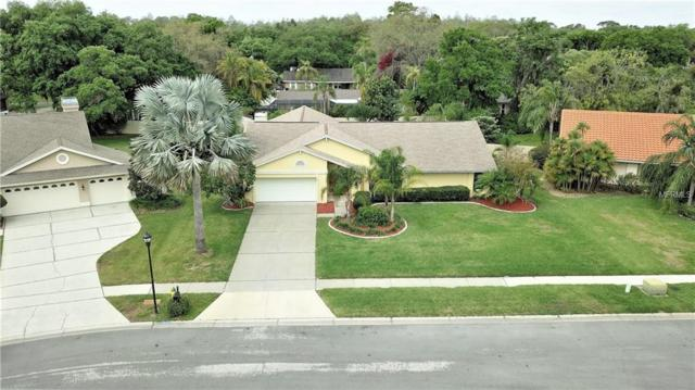 6218 Iroquois Court, Odessa, FL 33556 (MLS #T3163880) :: The Nathan Bangs Group