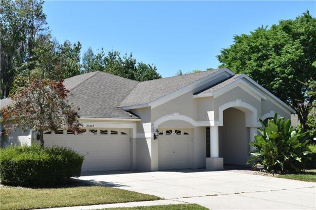 25804 Santos Way, Wesley Chapel, FL 33544 (MLS #T3164137) :: Delgado Home Team at Keller Williams