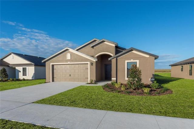 12133 Buttonbush Loop, Leesburg, FL 34788 (MLS #T3164151) :: Team Bohannon Keller Williams, Tampa Properties