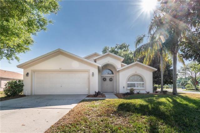 19801 Wyndmill Circle, Odessa, FL 33556 (MLS #T3164263) :: Griffin Group