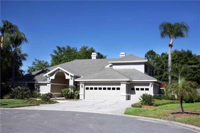 15105 Elmcrest Street, Odessa, FL 33556 (MLS #T3164330) :: Griffin Group
