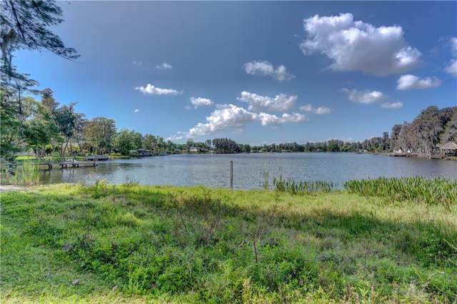 19210 Lake Allen Road, Lutz, FL 33558 (MLS #T3164859) :: Lockhart & Walseth Team, Realtors