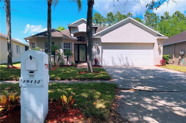 19132 Chemille Drive, Lutz, FL 33558 (MLS #T3165129) :: Andrew Cherry & Company