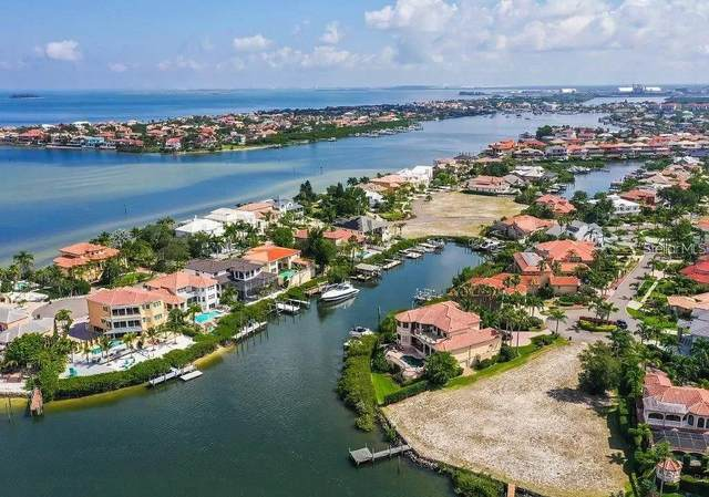 1002 Symphony Isles Boulevard, Apollo Beach, FL 33572 (MLS #T3166032) :: Everlane Realty
