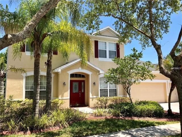 16159 Colchester Palms Drive, Tampa, FL 33647 (MLS #T3166097) :: The Duncan Duo Team