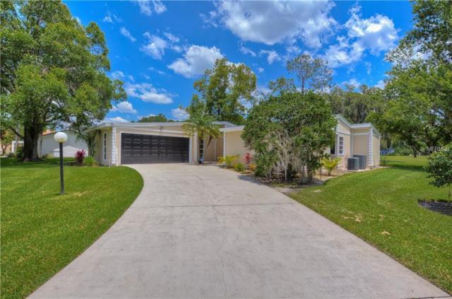 5140 Cricket Lane, Wesley Chapel, FL 33543 (MLS #T3166727) :: Armel Real Estate