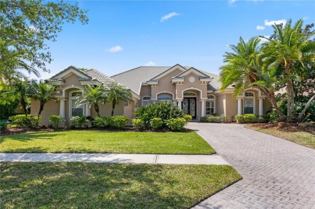 11818 Shire Wycliffe Court, Tampa, FL 33626 (MLS #T3167230) :: Andrew Cherry & Company