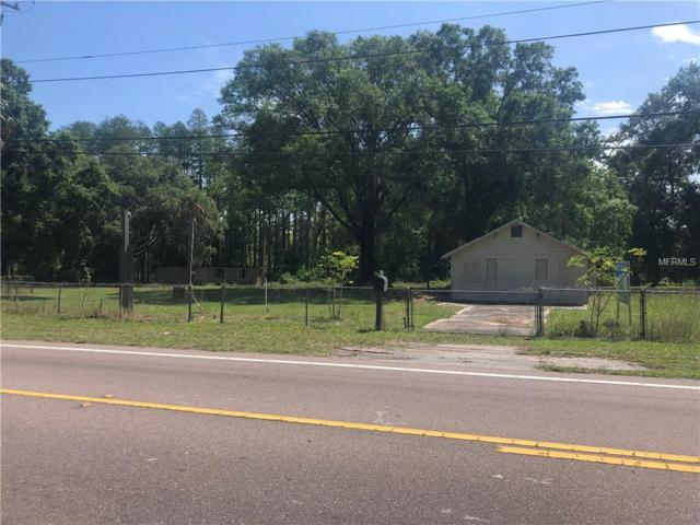 17311 Gunn Highway, Odessa, FL 33556 (MLS #T3167680) :: Cartwright Realty