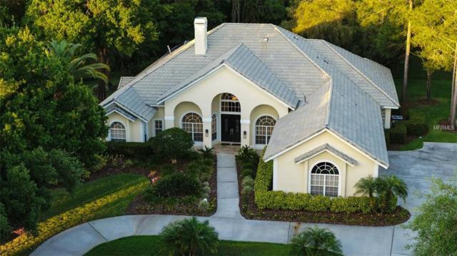 8950 Magnolia Chase Circle, Tampa, FL 33647 (MLS #T3167724) :: Medway Realty