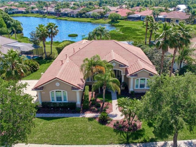 11921 Royce Waterford Circle, Tampa, FL 33626 (MLS #T3167754) :: Medway Realty