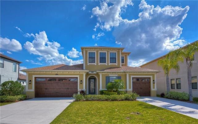 28746 Tavira Court, Wesley Chapel, FL 33543 (MLS #T3167907) :: Team Bohannon Keller Williams, Tampa Properties