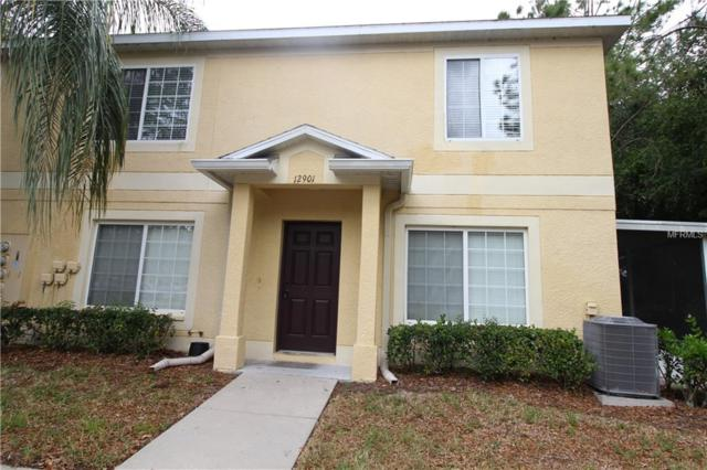 12901 Jessup Watch Place, Riverview, FL 33579 (MLS #T3167950) :: Cartwright Realty