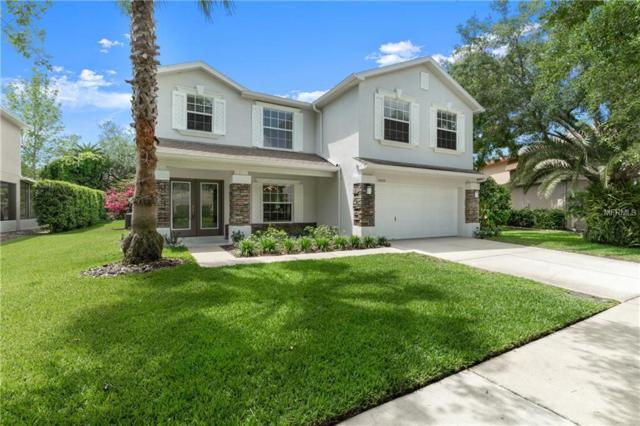 15323 Palomapark Lane, Lithia, FL 33547 (MLS #T3168145) :: Medway Realty