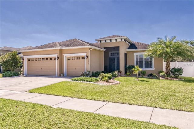 10612 Carloway Hills Drive, Wimauma, FL 33598 (MLS #T3168302) :: Team Bohannon Keller Williams, Tampa Properties
