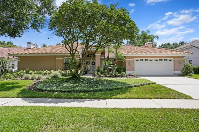 9115 Canberley Drive, Tampa, FL 33647 (MLS #T3168370) :: Florida Real Estate Sellers at Keller Williams Realty
