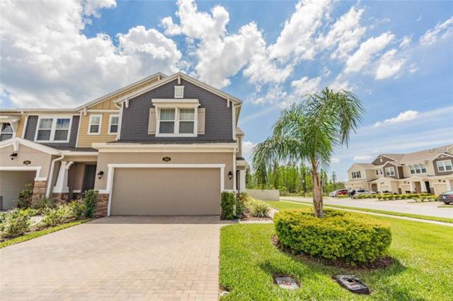 18844 Ulmus Street, Lutz, FL 33558 (MLS #T3168661) :: Cartwright Realty