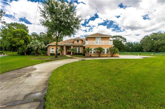 6664 Country Club Road, Wesley Chapel, FL 33544 (MLS #T3169049) :: The Duncan Duo Team