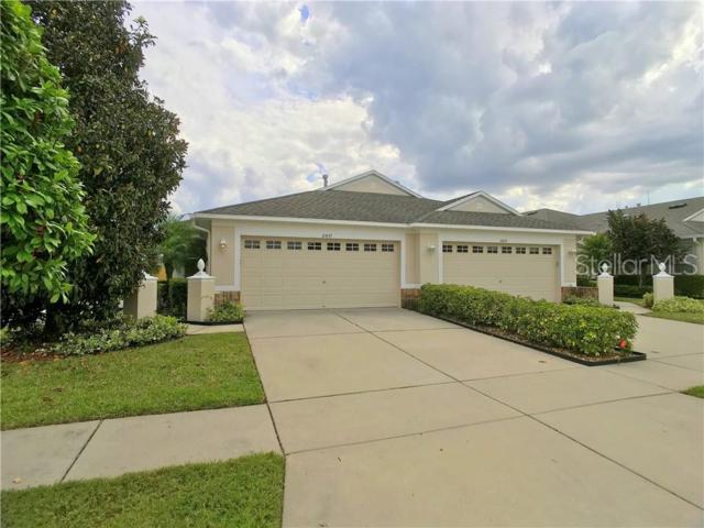 11437 Cambray Creek Loop, Riverview, FL 33579 (MLS #T3169063) :: The Duncan Duo Team