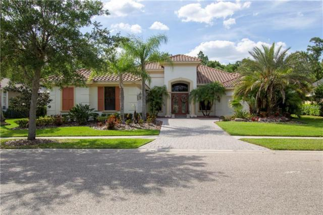 11946 Royce Waterford Circle, Tampa, FL 33626 (MLS #T3169150) :: Andrew Cherry & Company