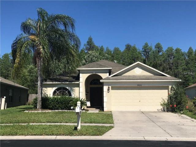 31211 Wrencrest Drive, Wesley Chapel, FL 33543 (MLS #T3169710) :: Team Bohannon Keller Williams, Tampa Properties