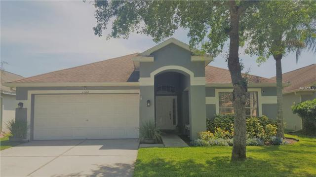 11212 Cypress Reserve Drive, Tampa, FL 33626 (MLS #T3169761) :: Myers Home Team