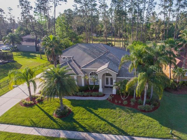 1160 Cypress Loft Place, Lake Mary, FL 32746 (MLS #T3169814) :: Premium Properties Real Estate Services