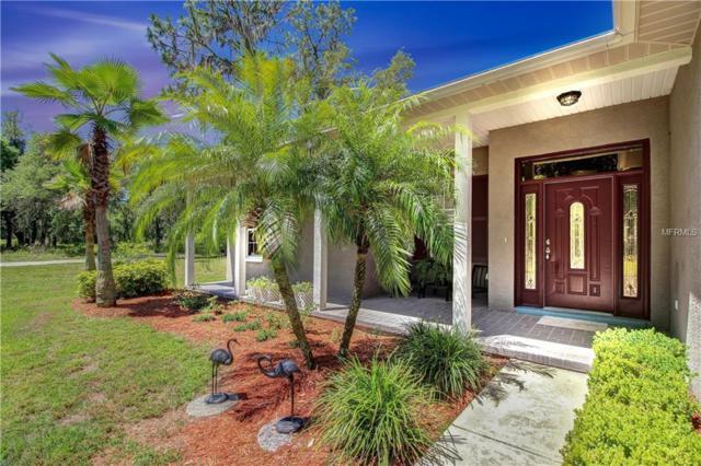 9841 Brantley Road, Lithia, FL 33547 (MLS #T3170498) :: Team Bohannon Keller Williams, Tampa Properties
