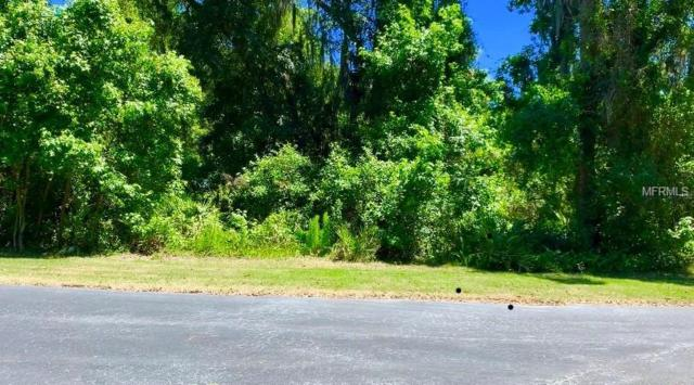 Kalebs Forest Trail, Dover, FL 33527 (MLS #T3171323) :: The Duncan Duo Team
