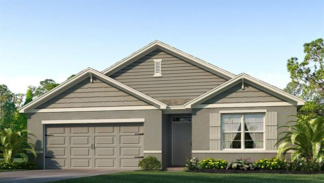 6944 Silverado Ranch Boulevard, Zephyrhills, FL 33541 (MLS #T3172022) :: The Duncan Duo Team