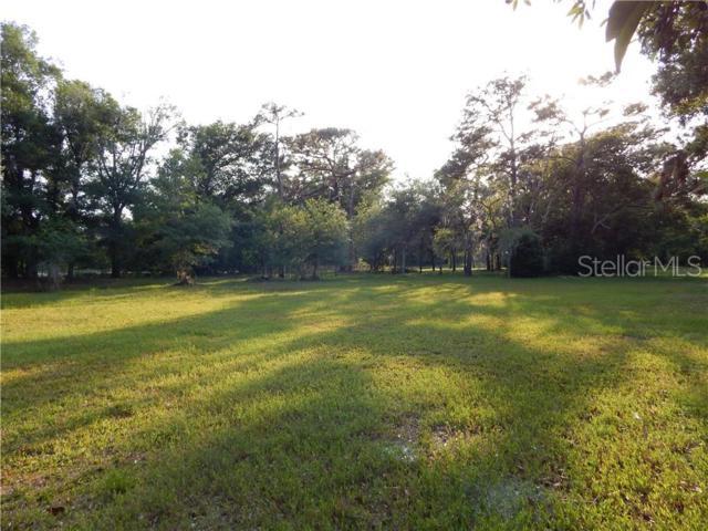 Gardenia Drive, Land O Lakes, FL 34638 (MLS #T3172224) :: The Duncan Duo Team