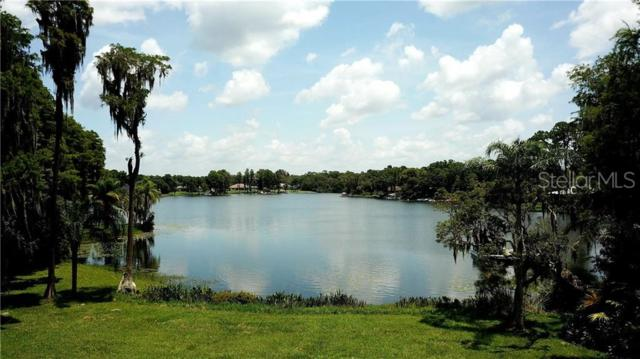 16113 Winding Water Drive, Odessa, FL 33556 (MLS #T3172353) :: The Duncan Duo Team