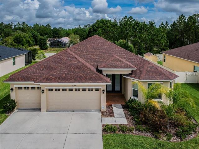 27129 Sora Boulevard, Wesley Chapel, FL 33544 (MLS #T3172463) :: Griffin Group
