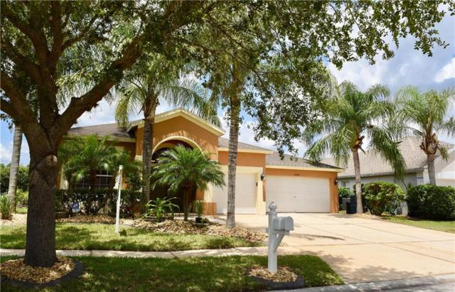25743 Hartack Drive, Wesley Chapel, FL 33544 (MLS #T3172747) :: Griffin Group