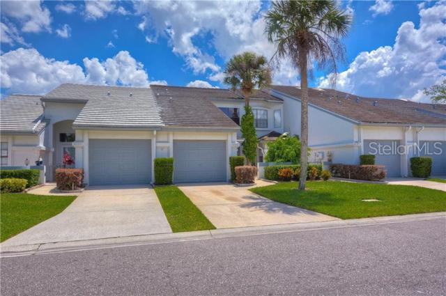4253 Brentwood Park Circle, Tampa, FL 33624 (MLS #T3172996) :: Jeff Borham & Associates at Keller Williams Realty