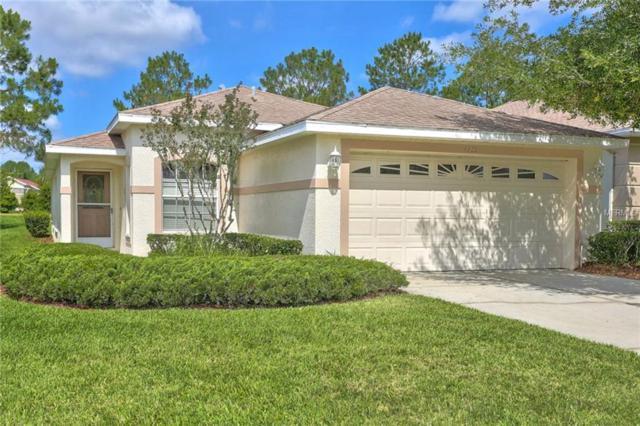 3219 Banyan Hill Lane, Land O Lakes, FL 34639 (MLS #T3173131) :: Griffin Group