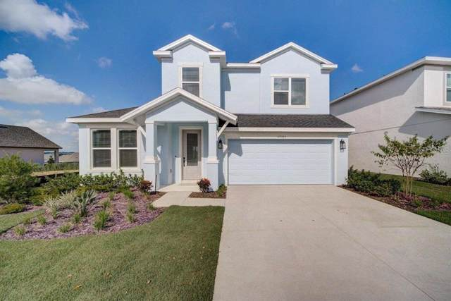 13319 Blossom Valley Dr, Clermont, FL 34711 (MLS #T3173279) :: The Duncan Duo Team