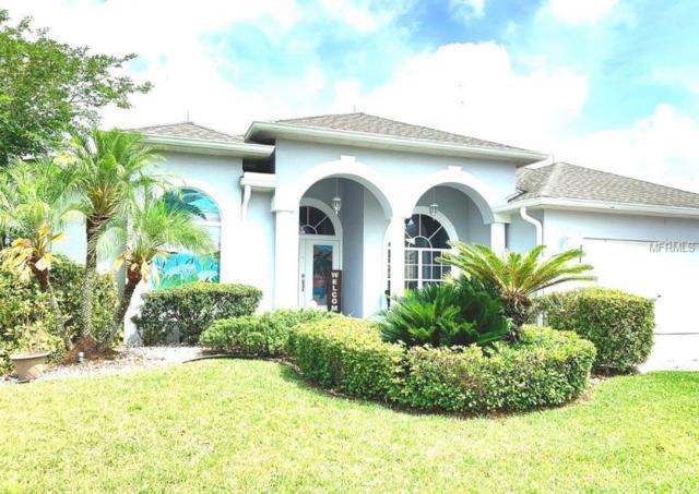 2433 Winsloe Drive, Trinity, FL 34655 (MLS #T3173427) :: Team Bohannon Keller Williams, Tampa Properties