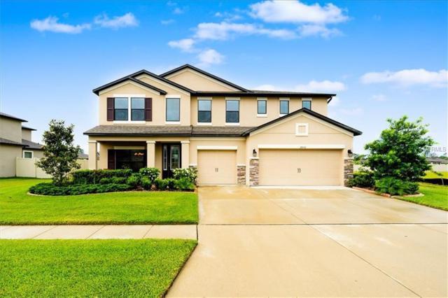 18542 Cortes Creek Boulevard, Spring Hill, FL 34610 (MLS #T3173560) :: Jeff Borham & Associates at Keller Williams Realty