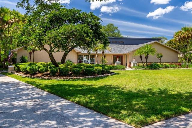 4228 Winding Willow Drive, Tampa, FL 33618 (MLS #T3173601) :: Delgado Home Team at Keller Williams