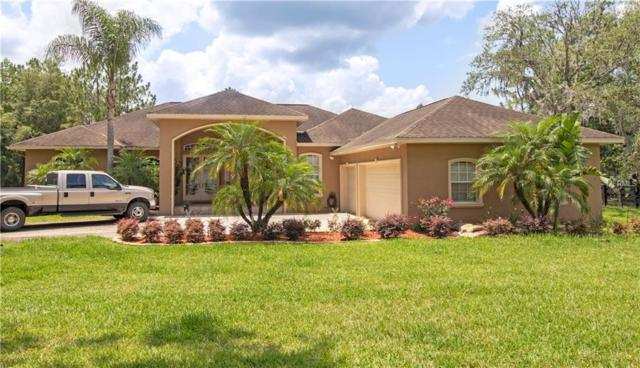 7353 Westpoint Drive, Wesley Chapel, FL 33544 (MLS #T3173764) :: The Duncan Duo Team