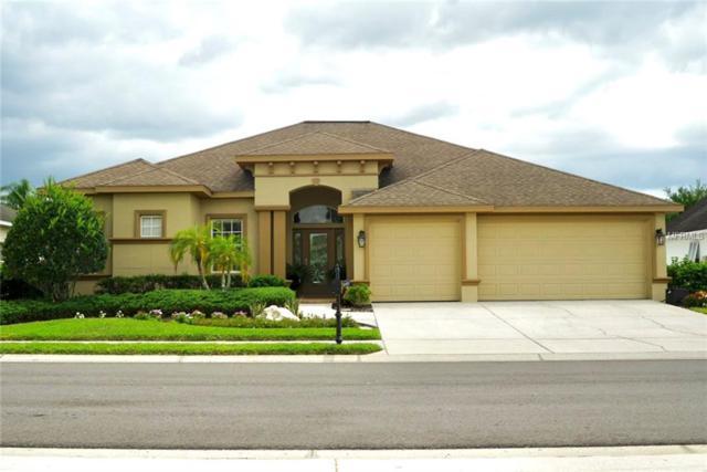 1831 Winsloe Drive, Trinity, FL 34655 (MLS #T3174168) :: Team Bohannon Keller Williams, Tampa Properties