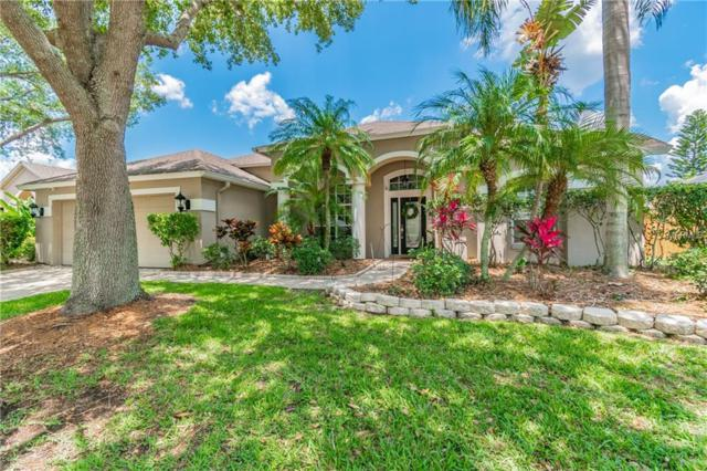 10511 Rochester Way, Tampa, FL 33626 (MLS #T3174342) :: Team Bohannon Keller Williams, Tampa Properties